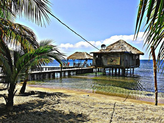 Roatan Boat Adventures: Stop for lunch in the East End