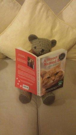 ريلستون مانور هوتل: Teddy up to more mischief reading my book this time :) love the humorous touch :)