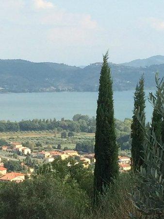 Villa San Crispolto: Another view....