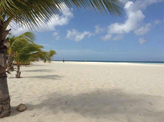 مانشيبو بيتش ريزورت آند سبا: The Beach from the hotel