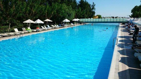 فندق كارفن سراي كوندو: Pool