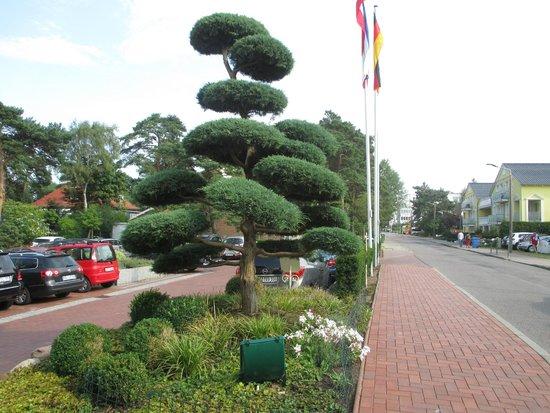 روجارد ستراند هوتل: Parking area and front