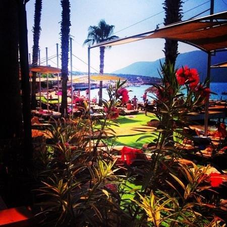 إسران ريزورت آند سبا بودروم: View from the bar