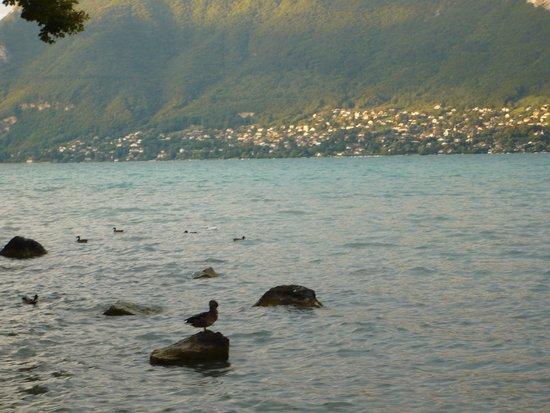 لورور دو لاك: au bord d lac d'Annecy