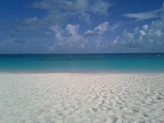تركس وكايكوس: Turks and Caicos - Great Beach