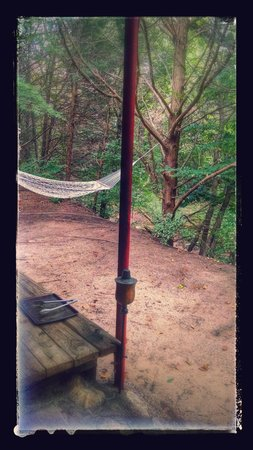 River of Love Cabins: great view!