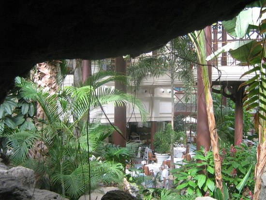 Hotel Cordial Mogan Playa: Garden