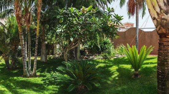 Villa al Alba: Jardin 2