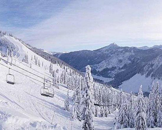 Stevens Pass Ski Area: The Backside