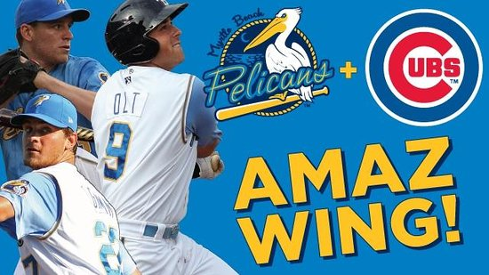 TicketReturn.com Field: Myrtle Beach Pelicans, Class A-Advanced for the Chicago Cubs