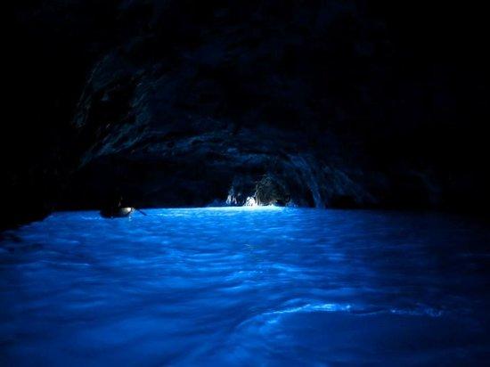 Capri Whales di Wendy: the Blue Grotto