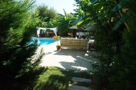 Han Boutique Hotel: Pool und Garten