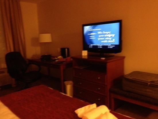 Comfort Inn & Suites South: comfortable room