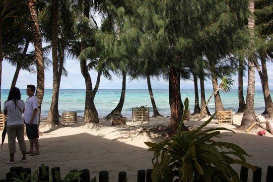 La Fiesta Resort: if you love the sea, you will love La Fiesta...
