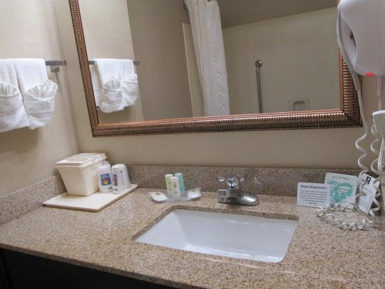 Comfort Inn & Suites at Stone Mountain: nice bathroom