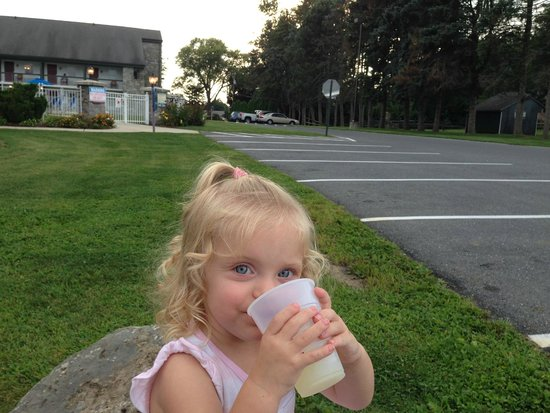 BEST WESTERN PLUS Revere Inn & Suites: Daughter drinking lemonade on one of the large rocks (annex building and pool in background)