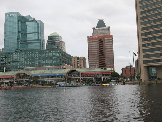 Renaissance Baltimore Harborplace Hotel: Hotel From the Harbour