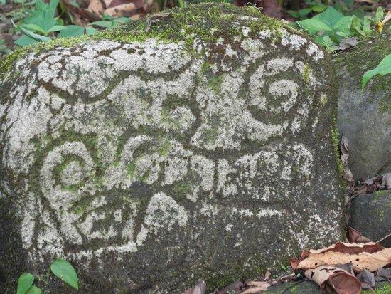 Sarapiquis Rainforest Lodge : petrograbado