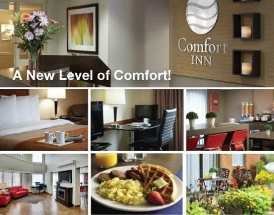 Comfort Inn: All New Just for You!