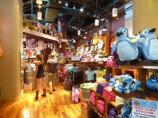 Ripley aquarium of the smokies discount coupons