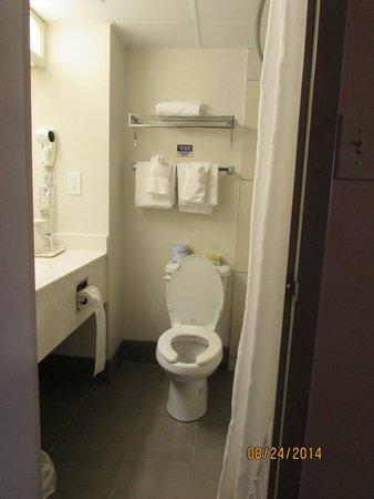 Canad Inns Polo Park : What a tiny bathroom