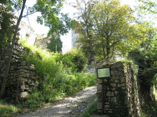 Burgruine Gösting : 着いた!!塔と外壁
