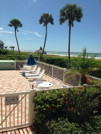 Silver Sands Gulf Beach Resort: Should we stay at the pool or go find some shells?