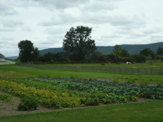 Garden and Pasture at Hancock Shaker Village