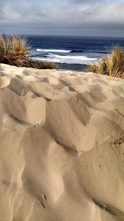 South Jetty County Park: Oregon Dunes Rock