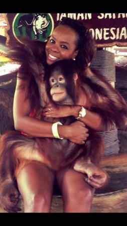 Taman Safari Indonesia Cisarua: I love her