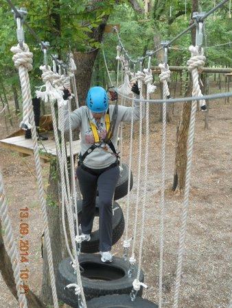 Trinity Forest Adventure Park : Medium difficulty course