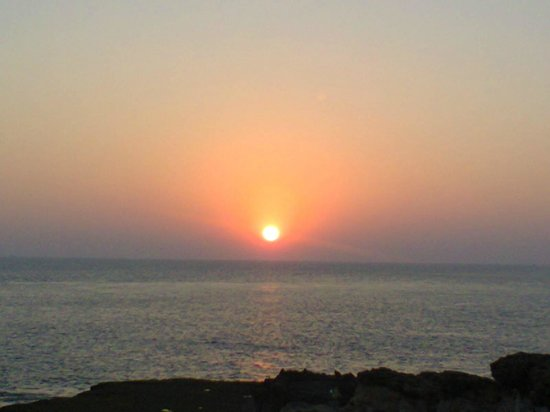 Hotel Palms : Sunset