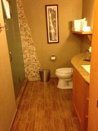 High Peaks Resort : Awesome bathroom