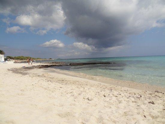 Insotel Punta Prima Resort & Spa: Beach