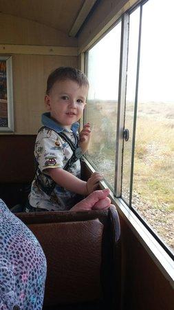 Romney, Hythe and Dymchurch Railway: Enjoying the view....