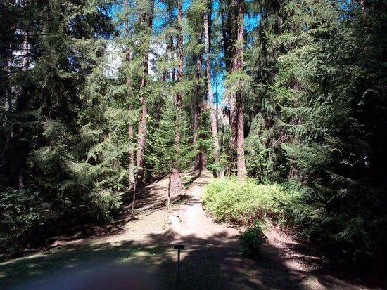 Parco Abbé J.M. Henry