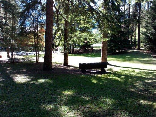 Parco Abbe J.M. Henry