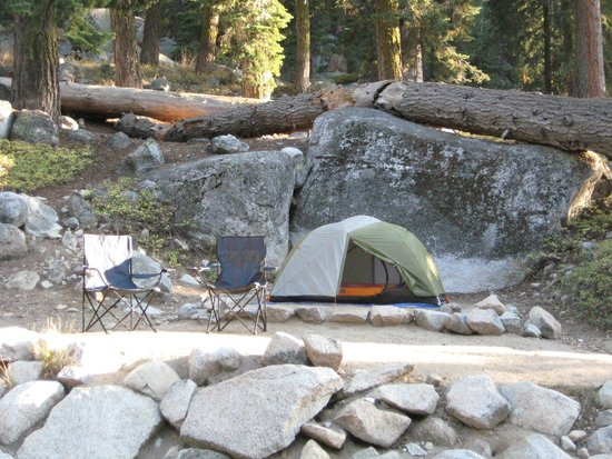 Lodgepole Campground: View of site 69