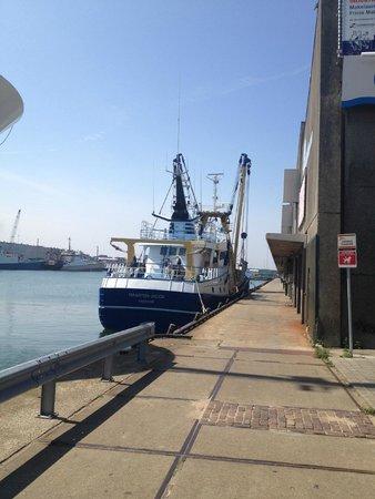 De Pier Scheveningen: Порт