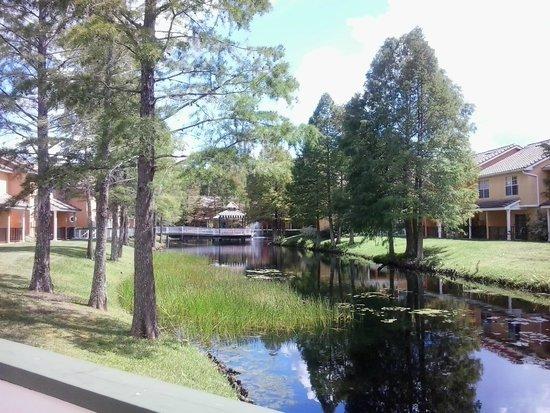 BEST WESTERN PREMIER Saratoga Resort Villas: vista sensacional