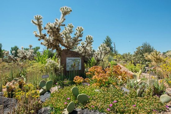 Western Colorado Botanical Gardens: Desert Plants