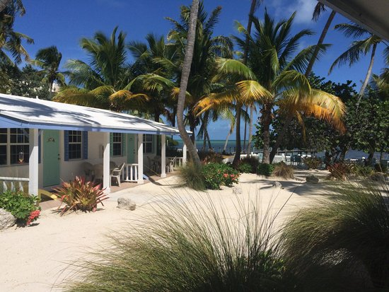 Pines and Palms Resort : Beautiful grounds