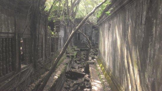 Beng Mealea: くずれた回廊