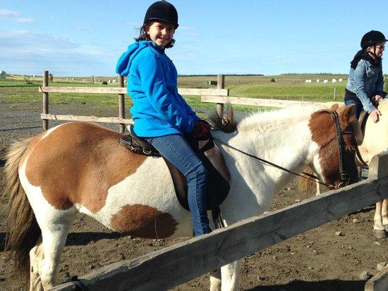 Hotel Laekur: Horseback riding