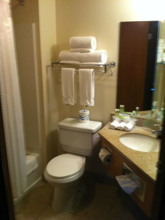 Holiday Inn Express Hotel & Suites Branson 76 Central : Bathroom off of living space in 4th floor suite