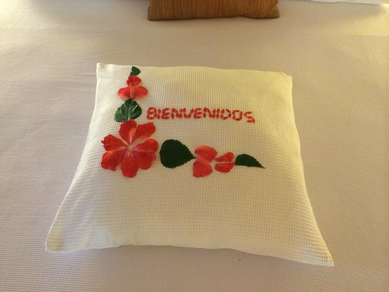 Viceroy Zihuatanejo: Each day there are beautiful flower arrangements like this on your pillows.