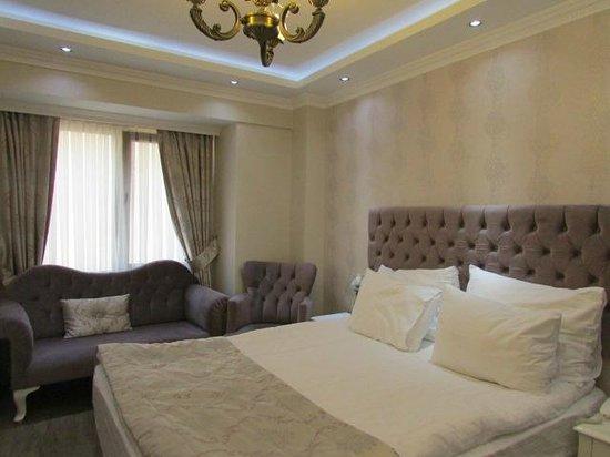 World Heritage Hotel Istanbul: Habitacion