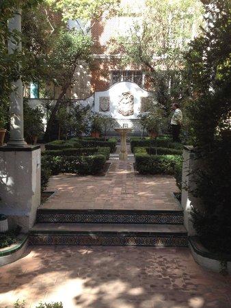 Musée Sorolla : Jardín del museo