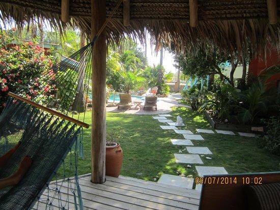 Boardwalk Hotel Aruba : beautiful, peaceful grounds
