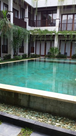 The Griya Sanur : Pool